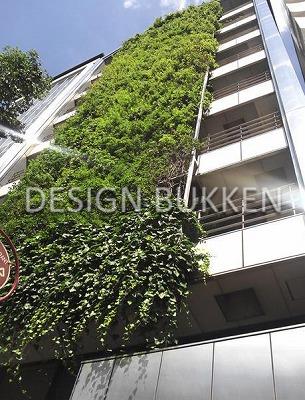 建物ファサード: 中央に緑のカーテンが走る
